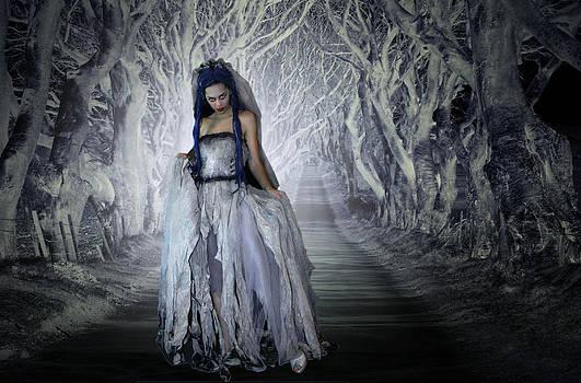 Bride of the dark Hedges by David McFarland