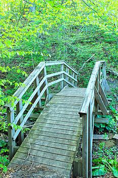 Rebecca Frank - Bridge 2
