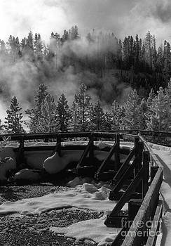 Sandra Bronstein - Bridge in Mud Volcano Area