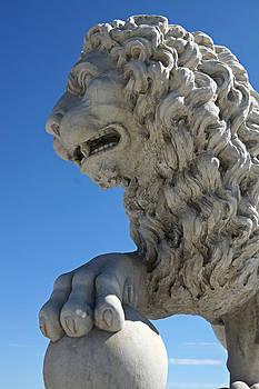 Carmen Del Valle - Bridge Majestic Lions