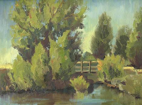 Bridge of Trees by Brandy Cattoor