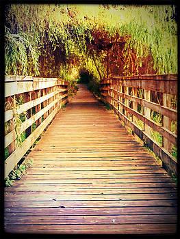 Bridge To Serenity by Lee Yang
