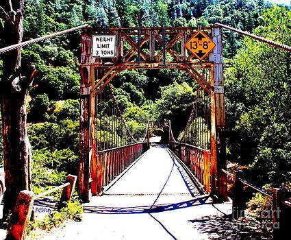 Patrick Witz - Bridge To The Wild Side