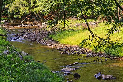 Darlene Bell - Bridge View