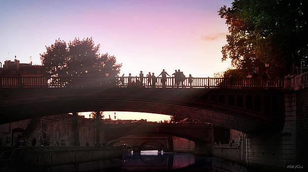 Bridges in evening Paris by Viktor Korostynski