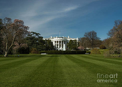 Tim Mulina - Bright Spring Day at the White House