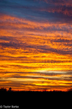 Bright Sunset  by Taylor Barba