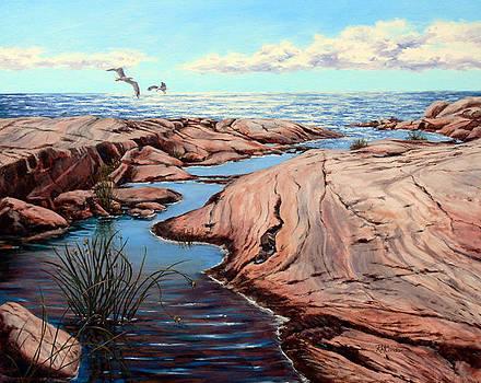 Brilliant Bay by RoseMarie Condon