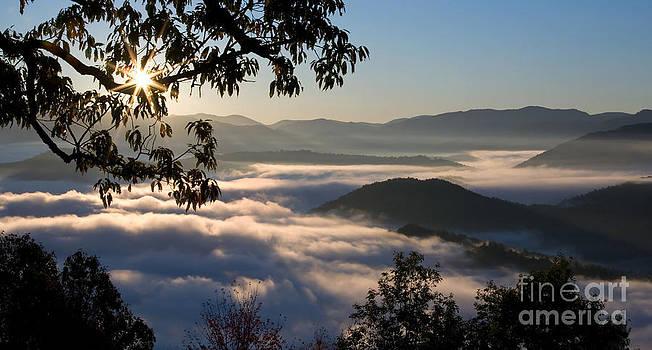 Brilliant Foggy Dawn by Matt Tilghman