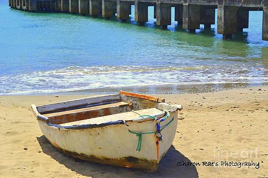 Broke Boat by Sharon Farris