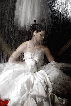Broken Ballerina by Sharon Coty