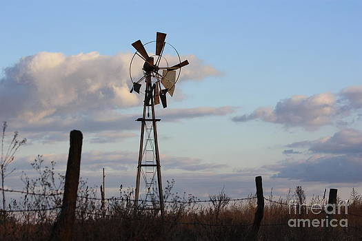Broken Country Windmill in a pasture with blue sky and cloud's by Robert D  Brozek