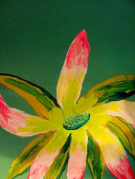 Bromeliad by Amy Bradley