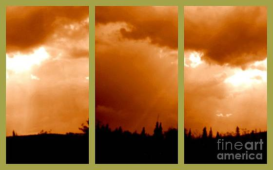Art Studio - Bronze Sky