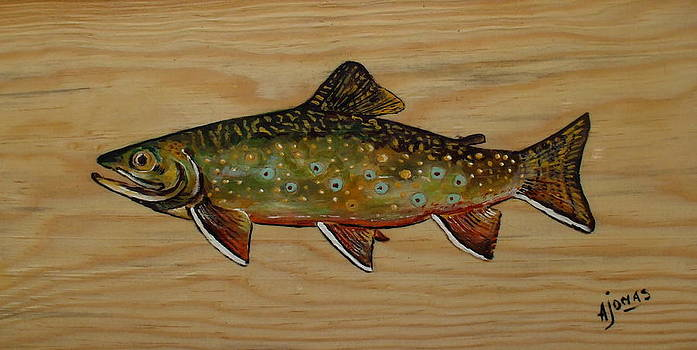 Amalia Jonas - Brook Trout