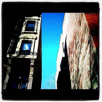 Brooklyn Sidewalk Views by Fern Fiddlehead