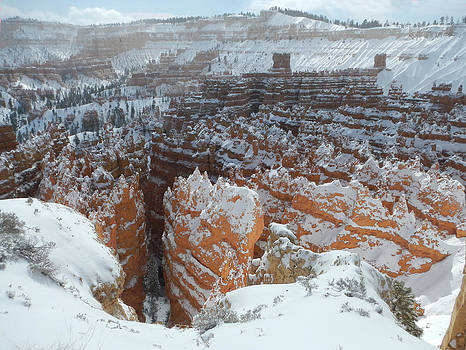 Bryce Canyon Feburary  by Stephen Bartholomew