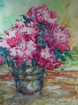 Bucket of Peonies by Mary Ann Clady