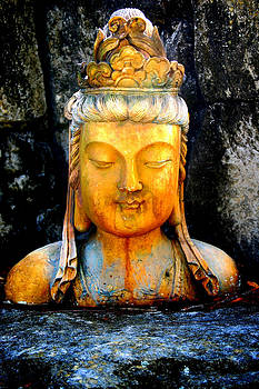 Buddha color by Tom Page