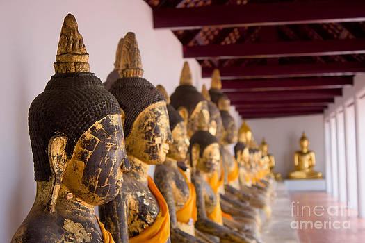 Buddha Culptures by Asaha Ruangpanupan