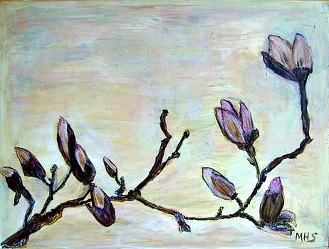 Budding Magnolia by Melynnda Smith