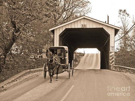 Tim Mulina - Buggy and Covered Bridge
