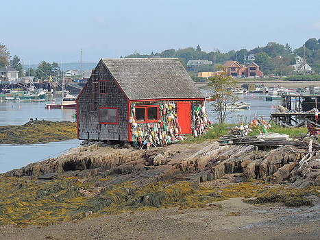 Buoy Shed on Baily Island by Gordon H Rohrbaugh Jr