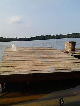 Burlington Bristol Lake by Theodore Johnson