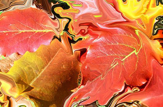 Burning Fall Leaves by Tanya Tanski