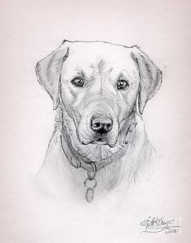 Buster by Gill Kaye