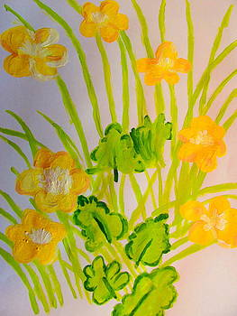Buttercups by Amy Bradley