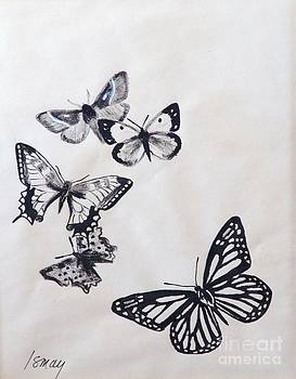 Butterflies and Moths by Rod Ismay