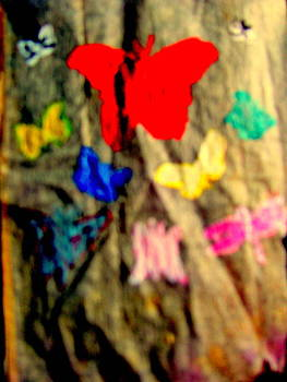 Butterflies in Flowers by Amy Bradley