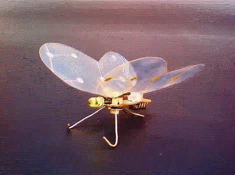 Butterfly #1 by Max Shkoropado