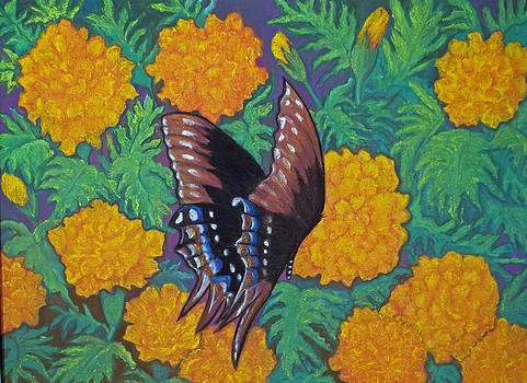 Butterfly and Marigolds by Norma Tolliver