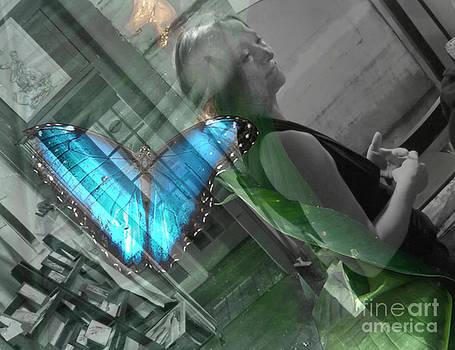 Butterfly Effect by Trish Hale