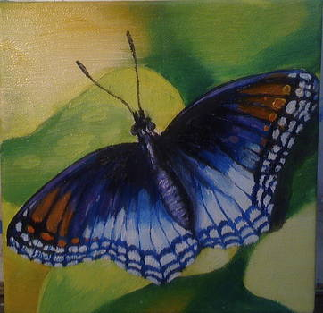 Butterfly by Jeff Arcel