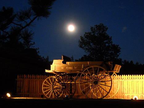 By Moonlight by Terri Maddin-Miller