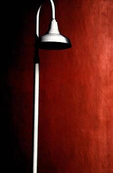 By The Light by Bob Whitt