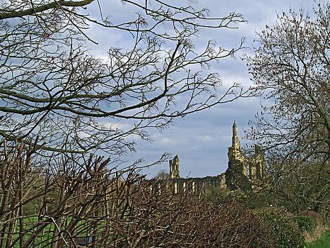 Byland Abbey 3 by Steve Watson