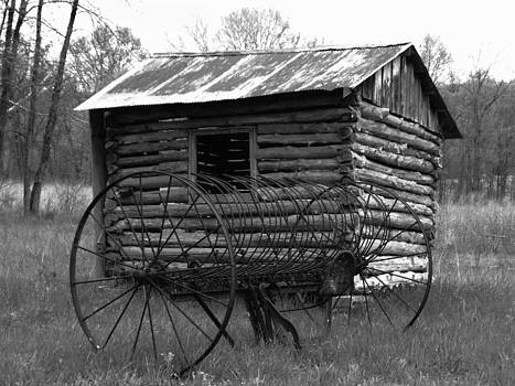 Cabin and a Rake by Patricia Erwin