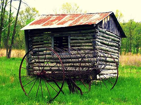 Cabin and Rake in Color by Patricia Erwin