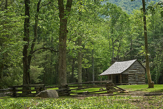 Cabin in woods by Roger Phipps