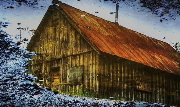 Cabin Reflect by Tom Liesener