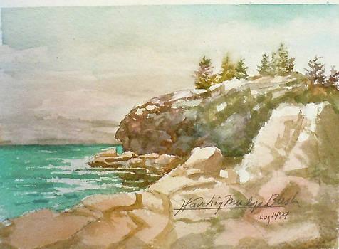 Cabot Point by Harding Bush