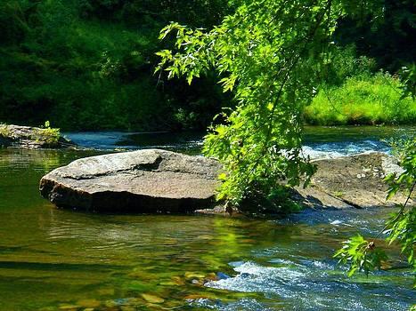 Cacapon Rock by Joyce Kimble Smith