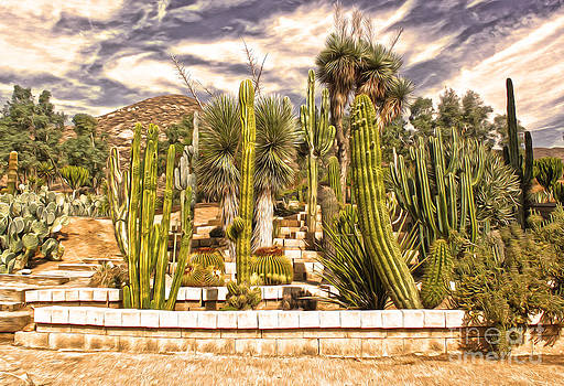 Gregory Dyer - Cactus Garden