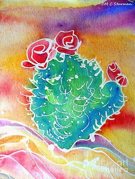 Cactus Sunrise by M c Sturman