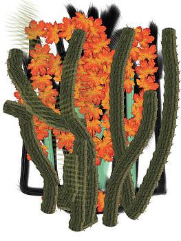 Cactusleaf by Steven Levin