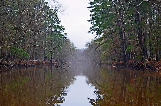 Caddo Lake Waterway by Charles Frieda